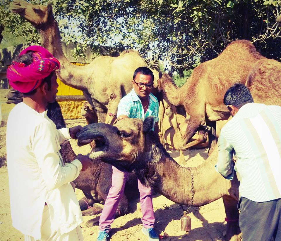 PEOPLE FOR ANIMALS, SIROHI, RAJASTHAN